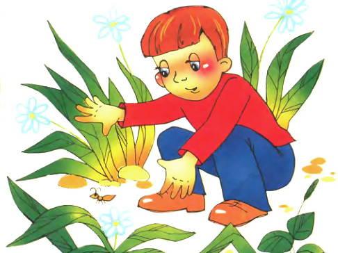 Юный натуралист рисунок